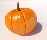 De pompoen van Halloween op wit Stock Foto's