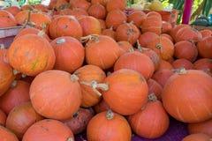 de pompoen voor verkoopt bij fruit en plantaardige markt stock afbeeldingen