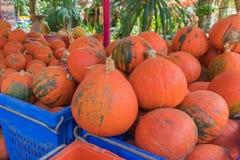 de pompoen voor verkoopt bij fruit en plantaardige markt royalty-vrije stock foto