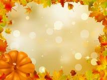 De Pompoenen en de bladeren van de herfst. EPS 8 Stock Afbeeldingen