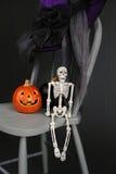 De Pompoenen en het Skelet van Halloween op Stoel Stock Afbeeldingen