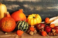 De pompoenen, het graan, de appelen, de noten en de oranje bloemen op een jute doen in zakken royalty-vrije stock afbeeldingen