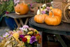 De pompoenen van de herfst stock afbeelding