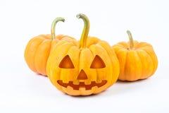 De pompoenen van Halloween op witte achtergrond Royalty-vrije Stock Fotografie