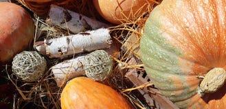 De pompoenen van de herfst en de herfstbloemen stock afbeeldingen