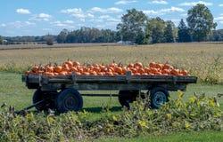 De pompoenen worden opgestapeld hoog op een houten wagen op een de pompoengebied van Michigan royalty-vrije stock afbeeldingen