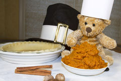 De Pompoenpastei van chef-kokbear baking thanksgiving Royalty-vrije Stock Foto's