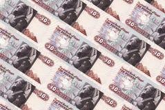 De ponden van Egypte Royalty-vrije Stock Afbeelding