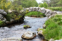de pont senoueix Στοκ Εικόνες