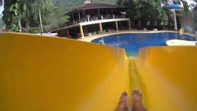 In de pool stock video