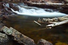 De pool bij het Rotsachtige Nationale Park van de Berg Stock Foto's