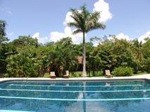 De Pool van Costa Rica Stock Fotografie