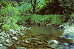 De pool van de Dalingen van Wailua Stock Afbeelding