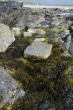 De Pool van de rots Stock Foto's