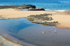 De Pool van de rots door het Overzees Stock Foto's