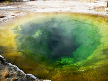 De pooldetail van de ochtendglorie (Yellowstone) royalty-vrije stock fotografie