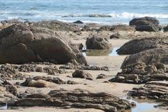 De pools van het getijde op het strand van de Inham van het Kristal in Californië royalty-vrije stock afbeelding