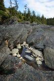 De pools van het getijde op rotsachtig strand Stock Afbeelding