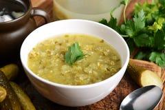 In de Poolse keuken, traditionele Poolse keuken, soep van de voorbereidings de smakelijke komkommer Royalty-vrije Stock Fotografie