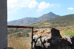 De poort Stock Fotografie