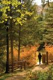 De Poort van de herfst stock afbeelding
