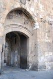 De poort van de Leeuw Royalty-vrije Stock Foto's