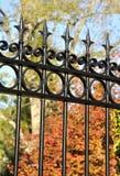 De poort van het smeedijzer Stock Afbeelding