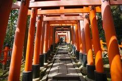 De Poort van Torii stock afbeeldingen