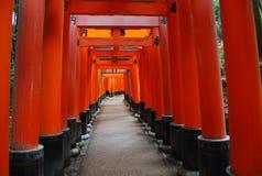De poorten van Torii Royalty-vrije Stock Foto's