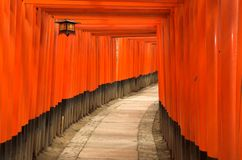 De poorten van Torii van het Heiligdom van Fushimi Inari in Kyoto, Japan Stock Foto's