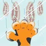 De poot van de tijger Royalty-vrije Stock Foto's