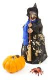 De pop van de heks voor Halloween met pompoen en spin Stock Foto