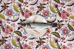De pop van de plaatwapens van de vissenbloem stock foto