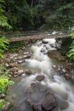 De Porings Hete Lente, Sabah, Borneo Maleisië Stock Afbeelding