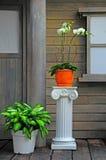 De portiek van het huis met bloempotten Royalty-vrije Stock Foto's