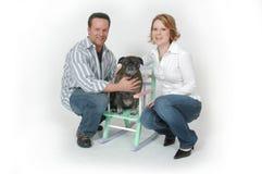 De Portretten van het huisdier Stock Foto