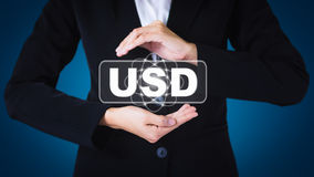 De posten van de bedrijfsvrouwenholding in USD Royalty-vrije Stock Fotografie