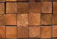 De Posten van de Omheining van de Californische sequoia. Royalty-vrije Stock Afbeelding