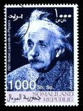De Postzegel van Albert Einstein Stock Fotografie