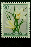 De postzegel van België de Kongo Stock Foto's