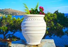 De pot van de Cycladicbloem in Andors-eiland Griekenland Stock Afbeeldingen