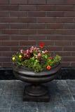 De pot van de straatbloem royalty-vrije stock afbeeldingen