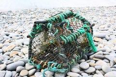 De Pot van de zeekreeft Stock Afbeelding