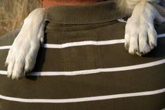 De poten van de hond Royalty-vrije Stock Foto's