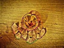 De potlood scherpe bloem Stock Foto's