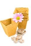 De potten en de tabletten van de turf. Stock Afbeeldingen