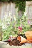 De Potten van de bloem royalty-vrije stock foto