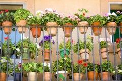 De potten van de bloem Royalty-vrije Stock Afbeeldingen