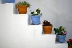 De Potten van de bloem - Paros, Griekenland Stock Foto's