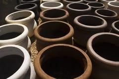De potten van de de kleiinstallatie van de tuin Stock Afbeeldingen